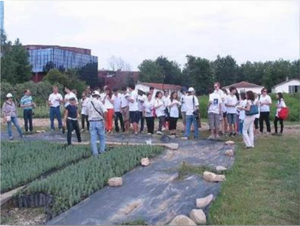 NSLI-Y students in Bursa, Turkey engaged in a service activity of planting trees alongside their host siblings with a project called Turkish-American Friendship Forest. The event received media attention and was said to signify strengthened ties between the two countries.