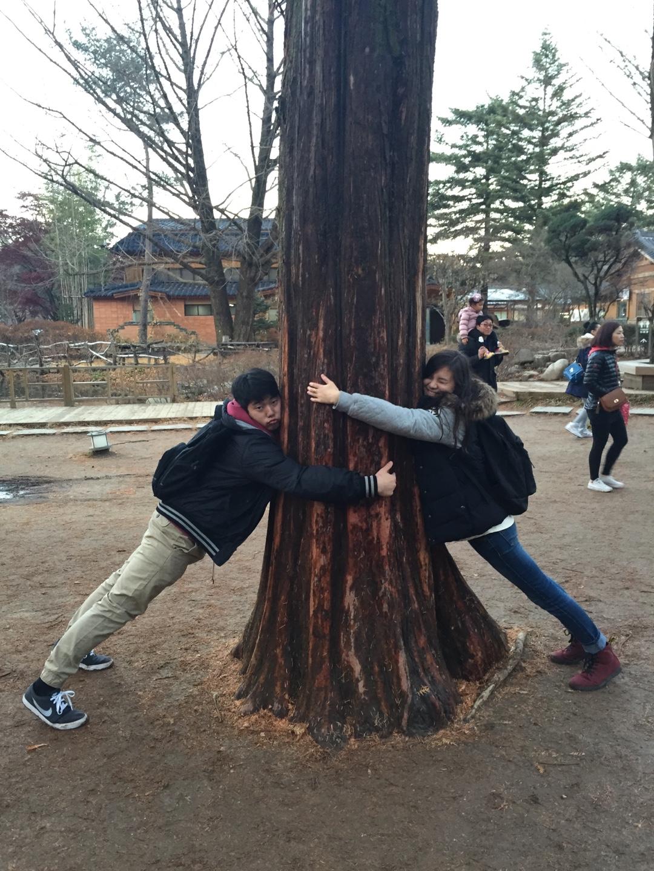 Two Nsliyians hugging a Nami island tree.