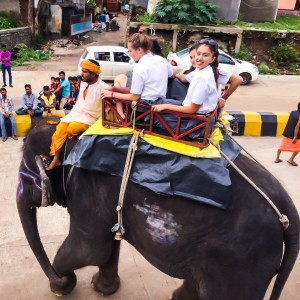 Stephanie and other NSLI-Y students go for an elephant ride