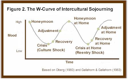 w-curve model